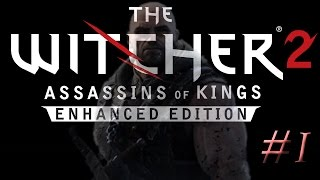I'M FRIENDLY - The Witcher 2: Assassins of Kings #1