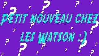 Petit nouveau chez les Watson :)