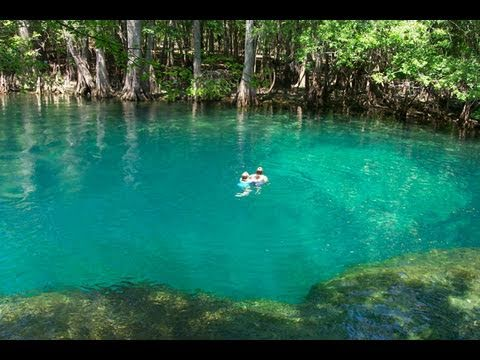 Underwater Cave Blue Springs State Park Youtube