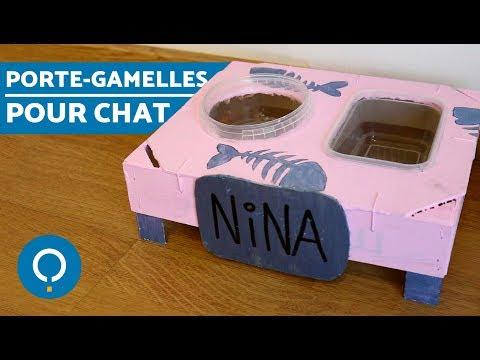 DIY - Porte-gamelles Maison Pour Chat !