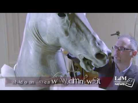 The restoration of an Ancient Greek Horse head