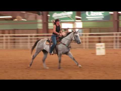RW Roany - Chicks Beduino, Streakin Six, Dash For Cash  Barrel Mare - Buster Ranch - Buster Horses