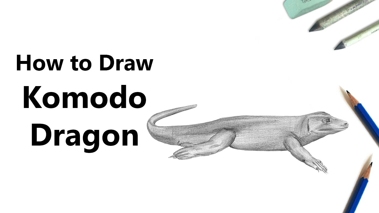 How To Draw A Komodo Dragon With Pencils Time Lapse Youtube
