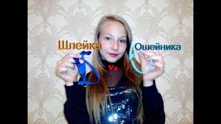 Ошейник Vs Шлейка/Что выбрать / Плюсы и минусы/Той- терьер Тайсон.