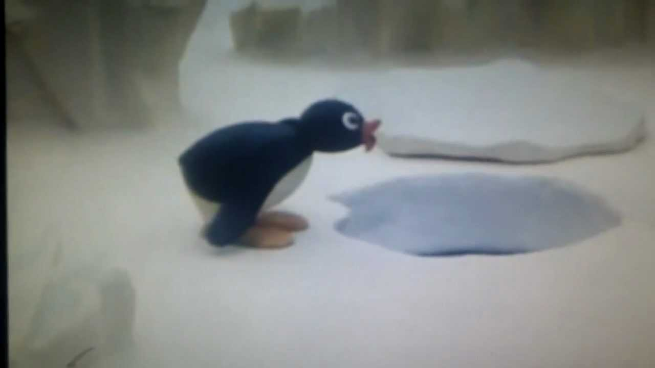 Pingu Says Noot Noot YouTube
