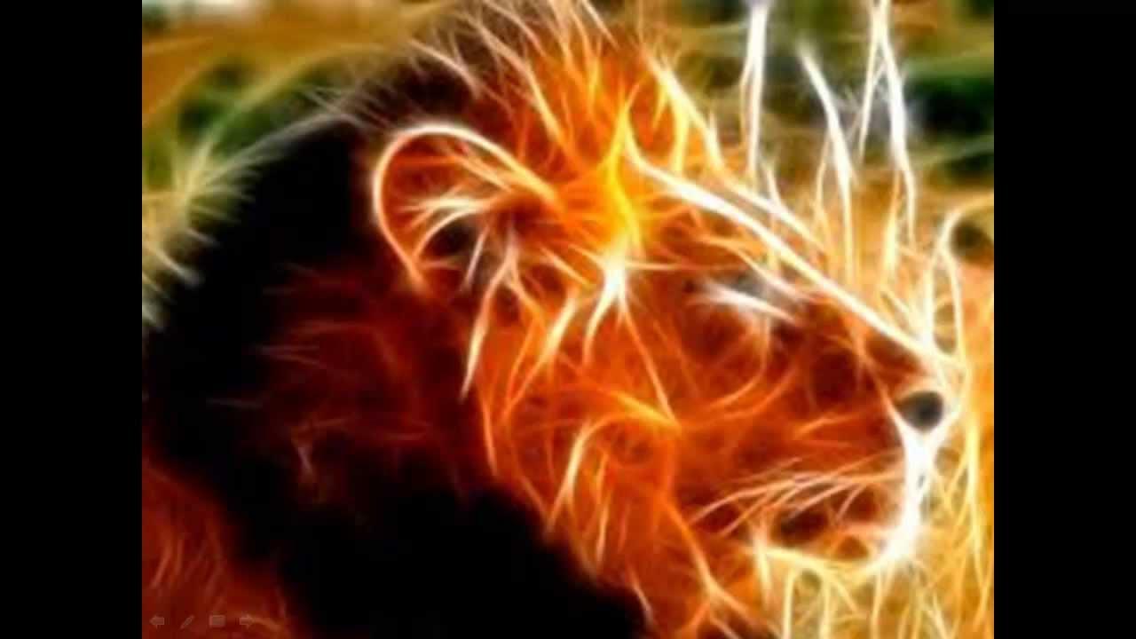 Caracteristicas de los signos del zodiaco - Caracteristicas de Leo
