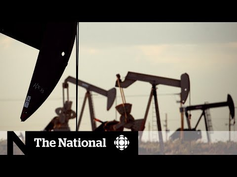 CBC News: The National: Industry giants say Canada's oil price woes reaching 'emergency situation'