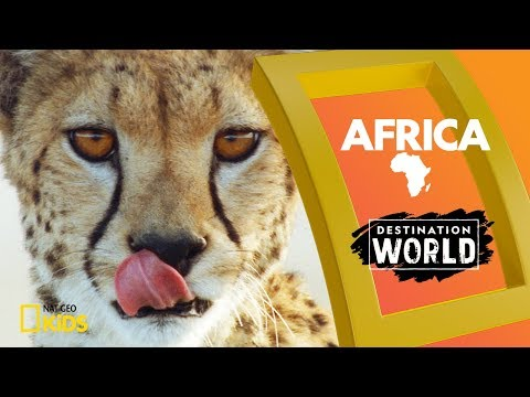 Africa | Destination World