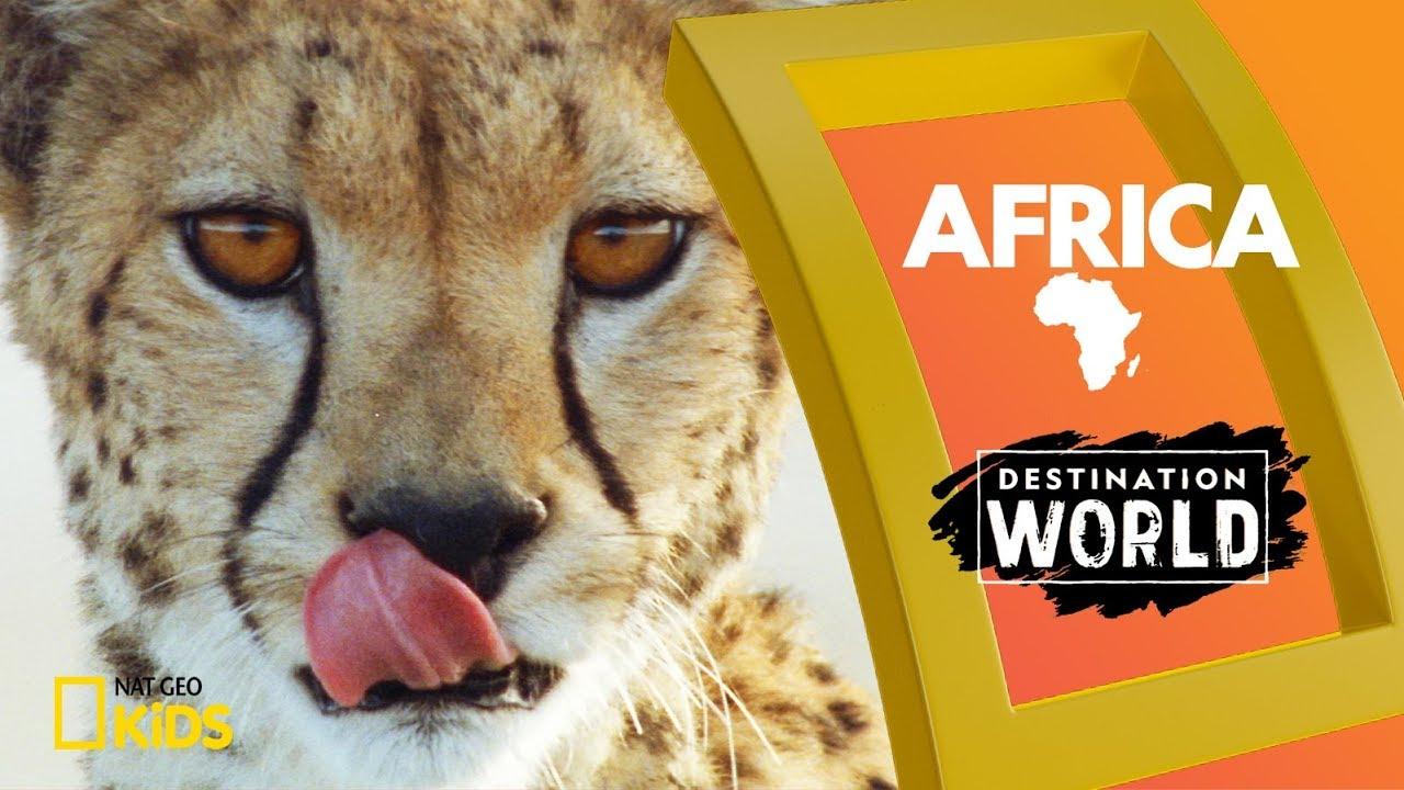 Africa | Destination World