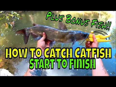 How To Catch Catfish In Streams Start To Finish!! Float Rigging Small River Channel Cats!
