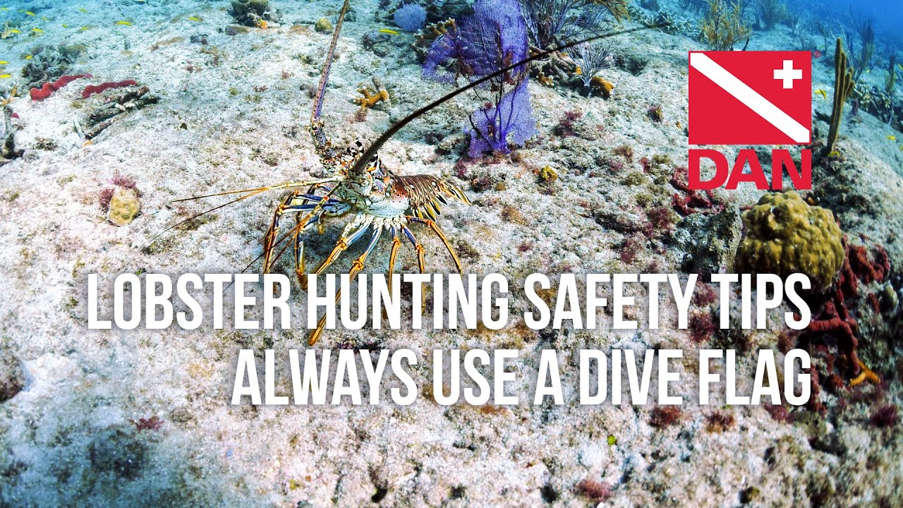 Always Use A Dive Flag Dan Lobster Mini Season Safety Tip
