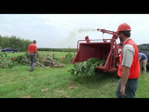 Biomass Energy Production: Harvesting Short Rotation Woody Crops