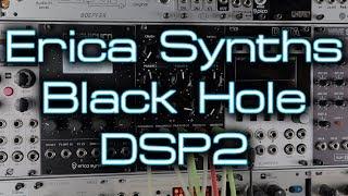 Erica Synths Black Hole DSP2 (mega modular FX) *In Depth Eurorack Demo*