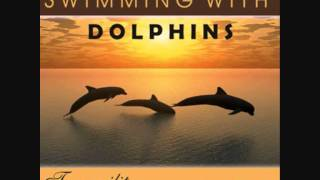 Swimming with Dolphins Sound clip.wmv