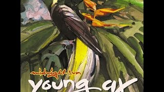 Young Ax - Midnight Sun