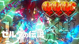 【ゼル縛】-ブレス オブ ザ ワイルド- マスモでハート3つ縛り part14 thumbnail