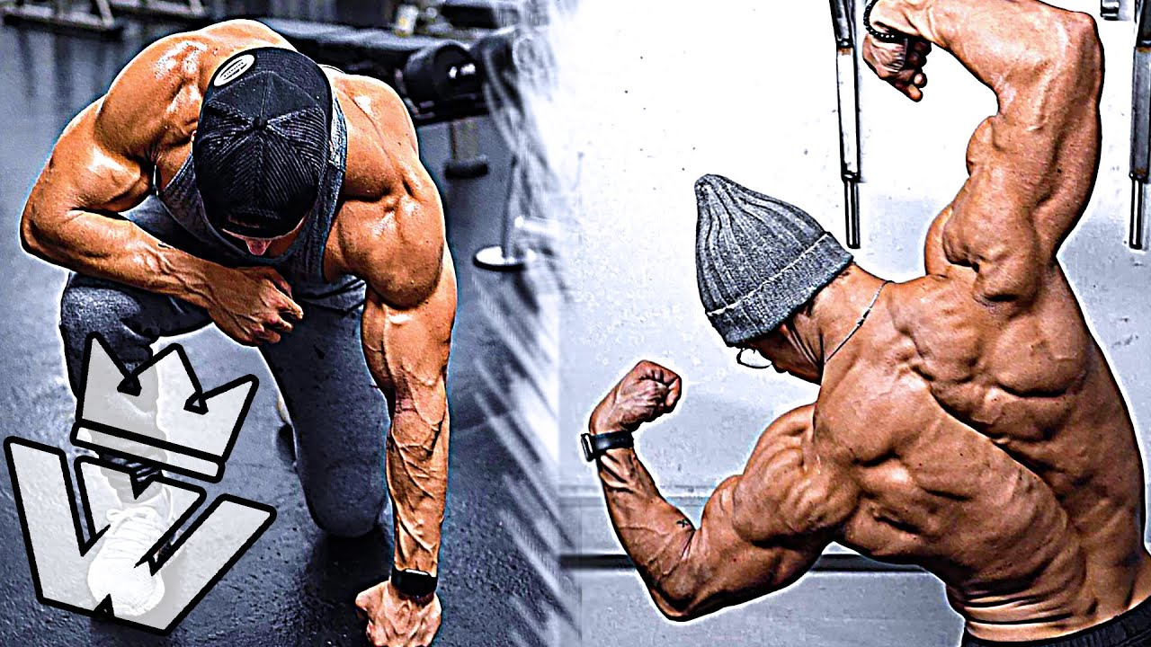How to Build MASSIVE ARMS Biceps/Triceps, V-Taper BACK & SHOULDERS