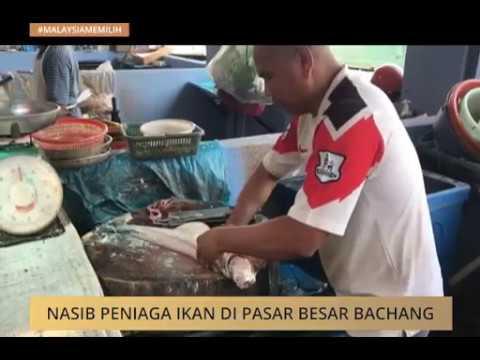 #MalaysiaMemilih: Nasib peniaga ikan di Pasar Besar Bachang