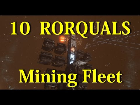 10 Rorqual Mining Fleet With PANIC Activation - EVE Online