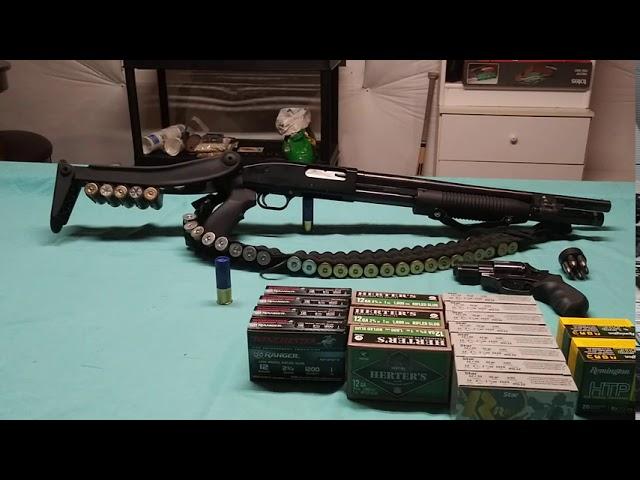 Ammunition is Very Scarce, I Recommend Getting a 12GA Shotgun