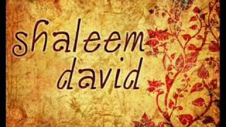 Shaleem David-National Anthem
