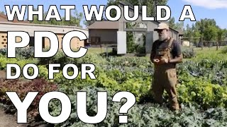Who Should Take a Permaculture Design Course and What Do You Get Out of It?