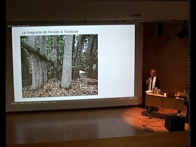 Janine Cransac - Les arbres remarquables (Toulouse, 7 mars 2020)