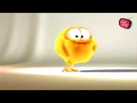 Sevimli şarkıcı Civciv Komik çizgi Film Youtube
