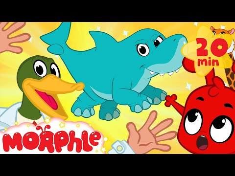 Super Hero Morphle's Crazy Animal Mixer! Shark Mixed with Elephant, Lion + cat and more Kids Video