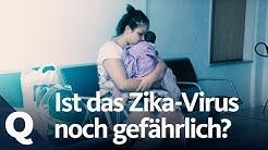 Wie viel Gefahr geht vom Zika-Virus noch aus? | Quarks