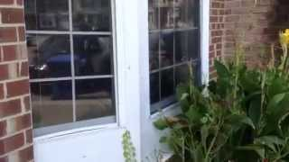 Virginia Beach Property Management 629 Counselor Square Real Property Management Hampton Roads