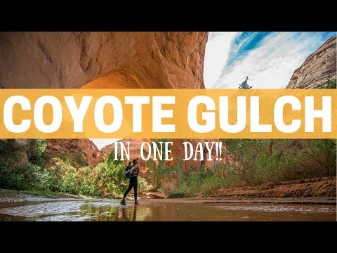 Coyote Gulch in Grand Staircase Escalante in one day