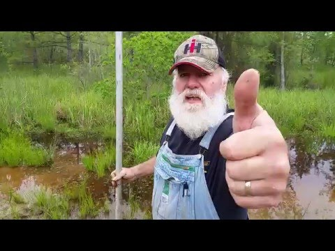 How To CATCH CRAWFISH For Fish Bait