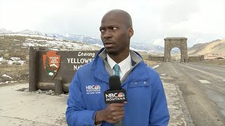 'I ain't messing with you': Reporter flees after spotting herd of bison I ABC7