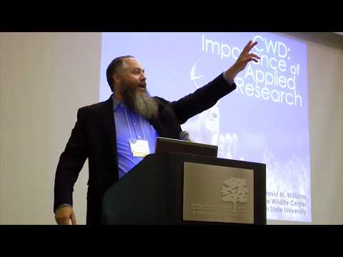 Importance of Applied Research - Dr. David Williams