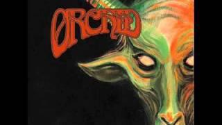 Orchid - Albatross