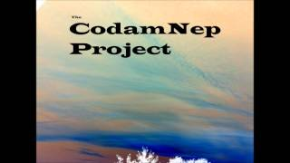 The CodamNep Project  - Everything Counts - Raw Mix (Depech Mode cover!) -  2013