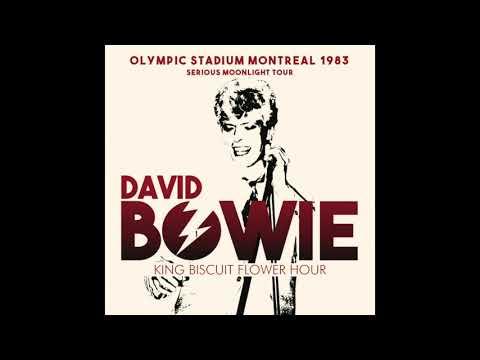 デヴィッド?ボウイ『ライヴ?イン?モントリオール1983』David Bowie - Olympic Stadium, Canada 12th July 1983