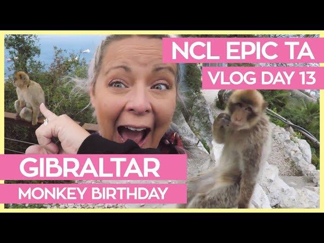 Monkeys of Gibraltar | NCL Epic Transatlantic Cruise Vlog Day 13