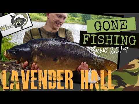 Gone Fishing - Lavender Hall Fishery, Coventry. (18+) Carp Fishing June 2019