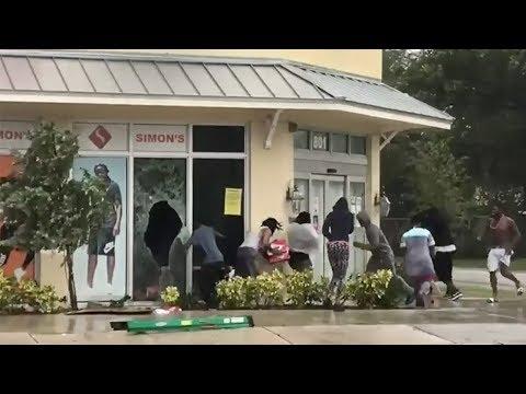 Hurricane Irma: Looting video creates racist backlash
