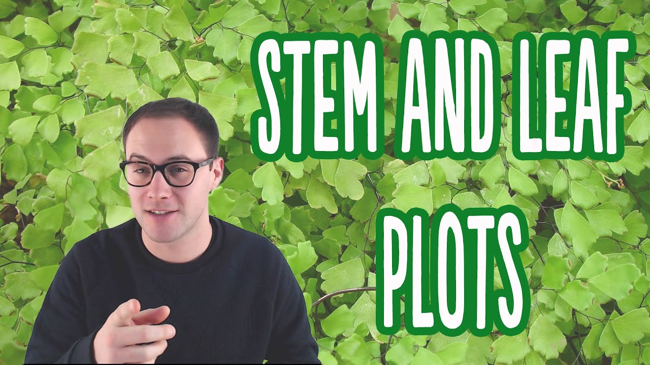 how to do a stem and leaf diagram heart anatomy worksheet plots youtube