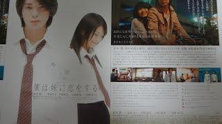 僕は妹に恋をする(B )映画チラシ 2007年1月20日公開 【映画鑑賞&グッズ...