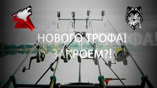 Русская Рыбалка 4 Russian Fishing 4 Продолжим искать трофеев