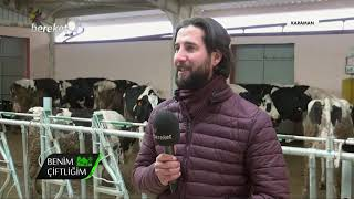 Benim Çiftliğim - Hayvanlarda Sürü Yönetimi