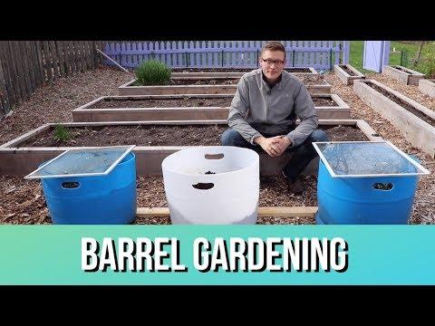 Grow MORE FOOD in Containers - DIY Barrel Gardening