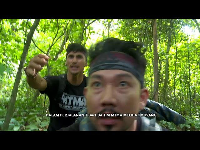 MTMA - Berbagai Spesies Hewan Khas Hutan Tropis Borneo Kalimantan (18/5/19) Part 1