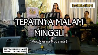 Vienna Novalina Ft BANDLAND'S _  Tepatnya Malam Minggu (TERRY)