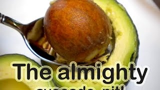 The almighty Avocado PIT?? #1 medicine nature can supply us for free!