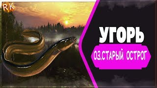 Русская Рыбалка 4/Russian Fishing 4 Ловим угря оз.Старый острог